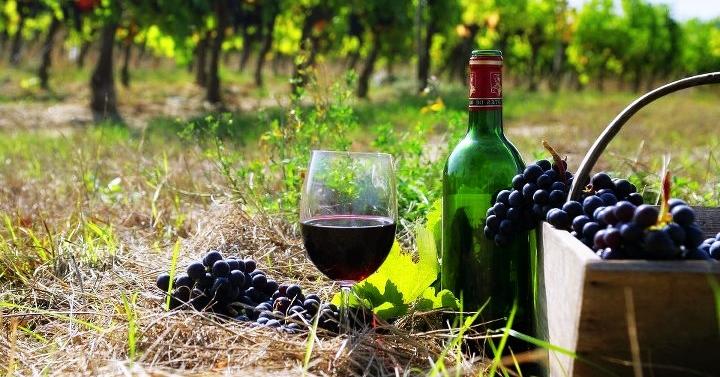 Wine Armenia1