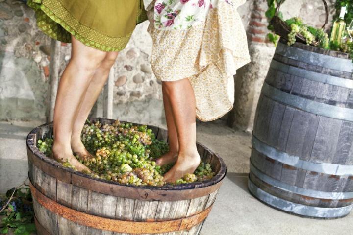 Wine Armenia2