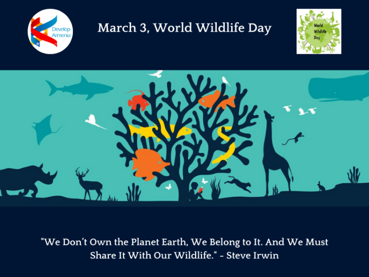 WildLifeDay 2020